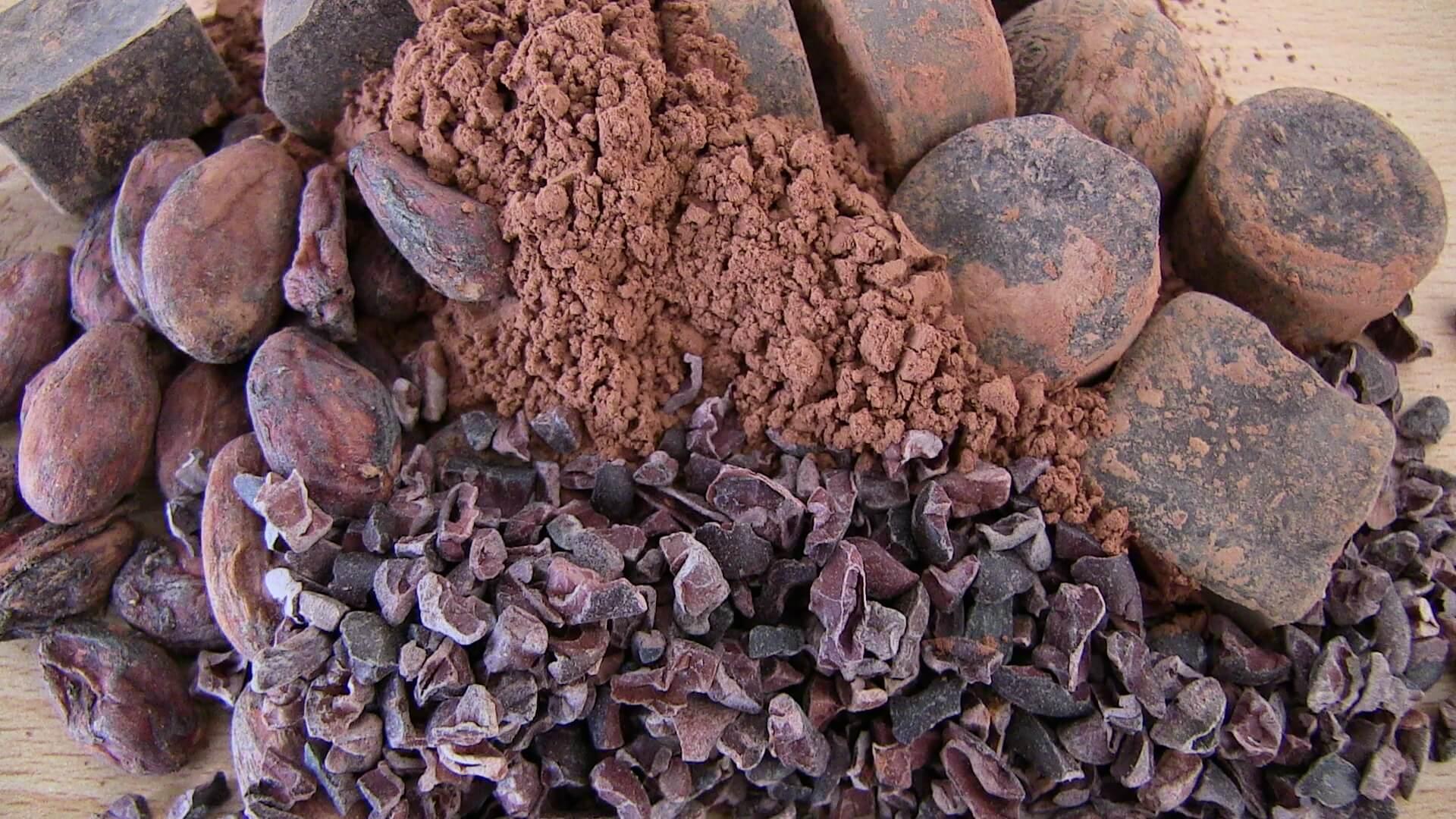 cacaopoeder gezond