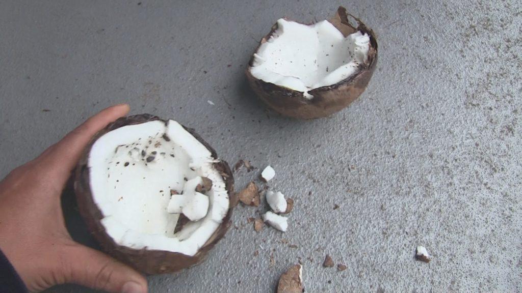 kokosnoot verdelen