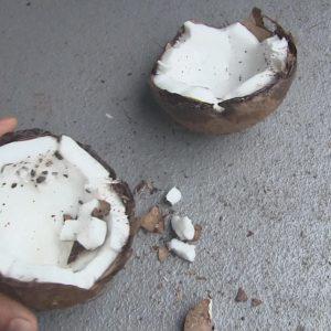 DIY: Hoe open je een kokosnoot?