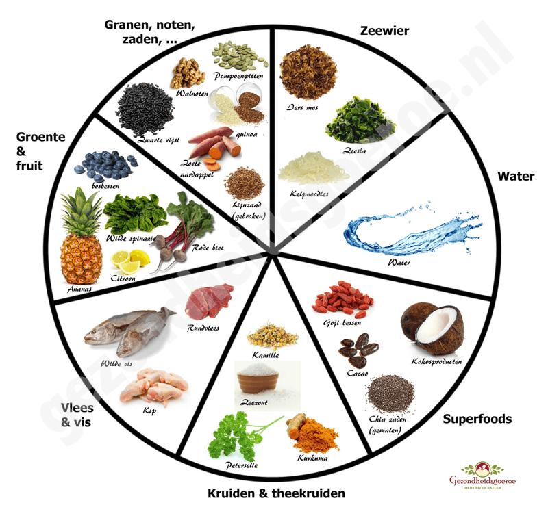 voedselcirkel schijf van vijf
