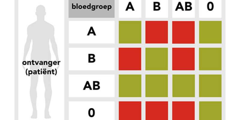 Wat zijn bloedgroepen? Alles over het bloedgroep dieet